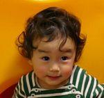 07-04-01_sakura01.jpg